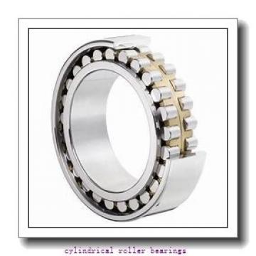25 mm x 52 mm x 18 mm  NKE NUP2205-E-MPA cylindrical roller bearings