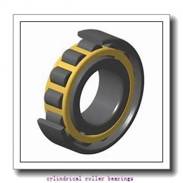 85 mm x 120 mm x 22 mm  NKE NCF2917-V cylindrical roller bearings