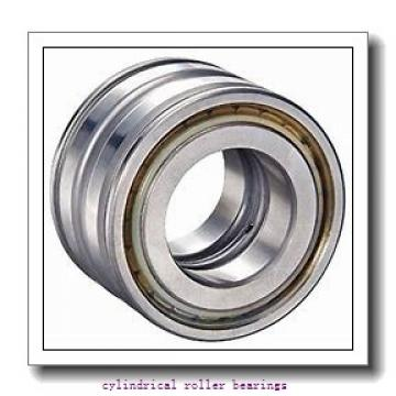 190 mm x 290 mm x 75 mm  NKE NCF3038-V cylindrical roller bearings