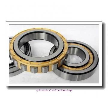 45 mm x 100 mm x 25 mm  NKE NJ309-E-MPA cylindrical roller bearings