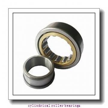 35 mm x 100 mm x 25 mm  NKE NU407-M cylindrical roller bearings