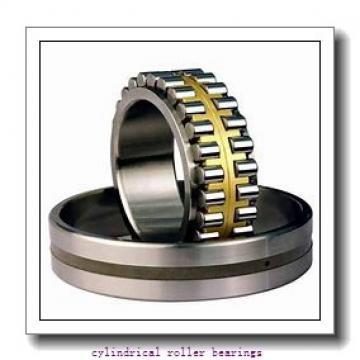 50 mm x 80 mm x 40 mm  NKE NNF5010-2LS-V cylindrical roller bearings